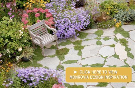 landscape nursery franklin tn landscape design and
