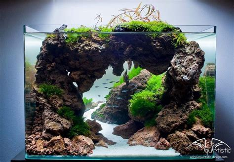 design aquascape mini 885 best images about aquarium fish tank aquascape