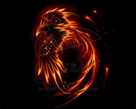 20 best phoenix images on pinterest phoenix bird