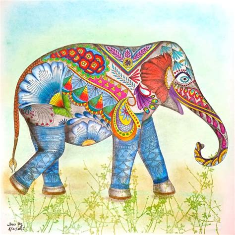 animal kingdom coloring book derwent coloursoft