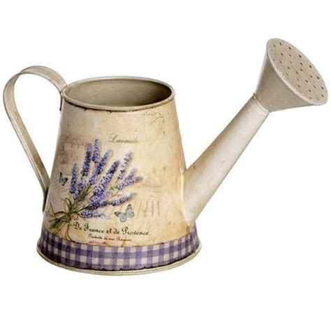 Decoration Watering Can 265 best decorative watering cans and pitchers indoors and patio images on patios