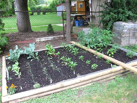 Small Vegetable Garden Design For Small House Making Guide Vegetable Garden In