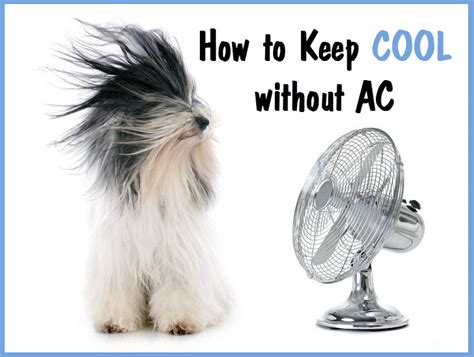 how to keep a house cool without ac how to keep a house cool without ac 28 images how to keep cool without air