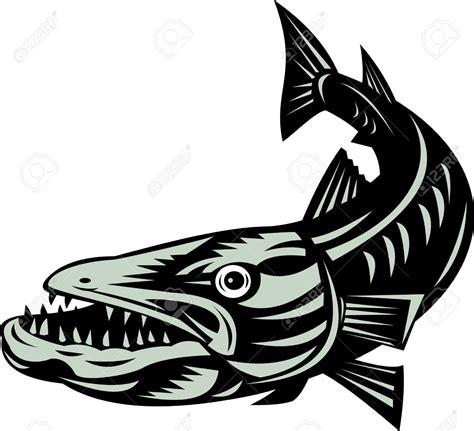 barracuda clipart barracuda clipart jaxstorm realverse us