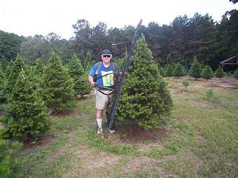 mill hollow christmas tree farm newsletter 2002