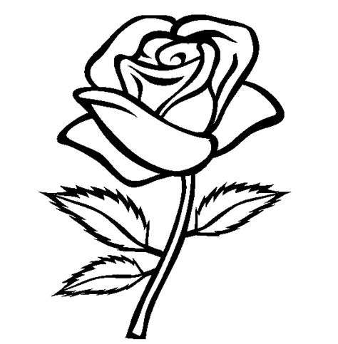 Realistic Rose Coloring Page | 25 flower coloring pages to color