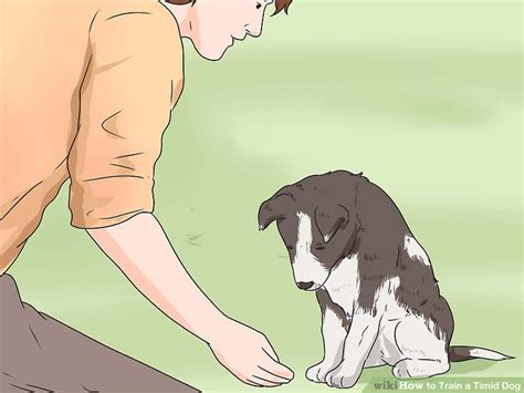 how to a timid how to a timid 13 steps with pictures wikihow
