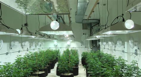 hygrometers  grow room  cannabis legale