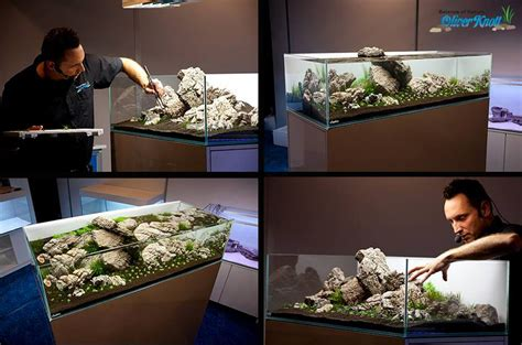 Oliver Knott Aquascaping by Aquascaping