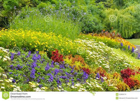 Bright Garden Flowers Background Of Bright Garden Flowers Stock Photo Image 52865574