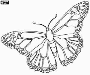 imagenes de mariposas monarcas para colorear juegos de mariposas para colorear imprimir y pintar 2