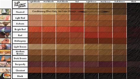 hair color chart brown hair color chart coloring hair and hair