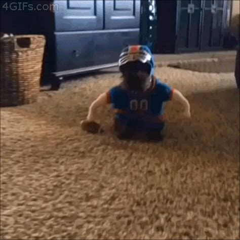 puppy vines costume gif images