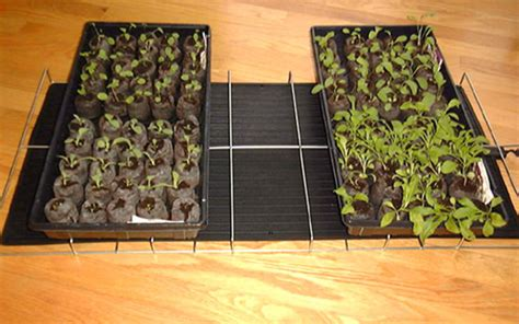 Heating Mats For Plants by Plant Growing And Seed Warming Mat