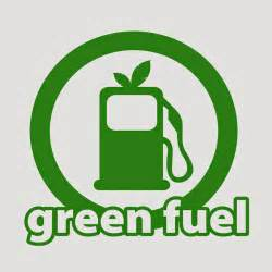 Conservation Save Energy Essay by 315 Words Essay On Save Fuel For The Future