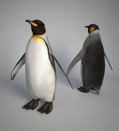 Pinguin Setbie organic texturing on behance