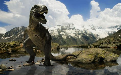 images of dinosaurs dinosaur animals photos gallery high defination wallpapers