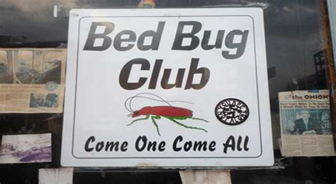 how do you get bed bugs in your house how do you get bed bugs off your surroundings 6 steps