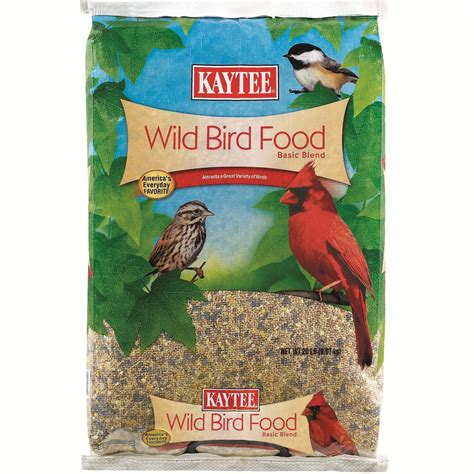 best bird feeder food squirrel proof bird feeder