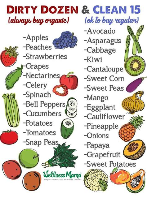 Guide To Fruit And Veggie Detox by Best 25 Fruit And Vegetable Diet Ideas On