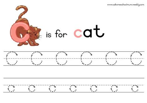preschool workbooks letter tracing animal alphabet letter tracing workbook books 11 animal tracing templates images dolphin stencil