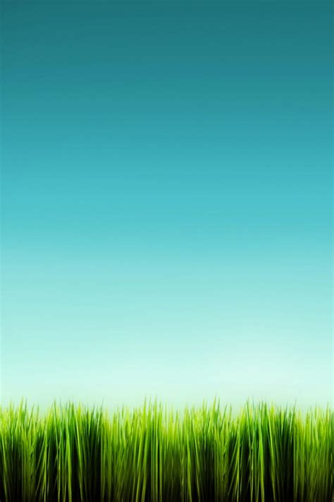 iphone wallpaper green grass green grass clear sky iphone wallpaper retina iphone
