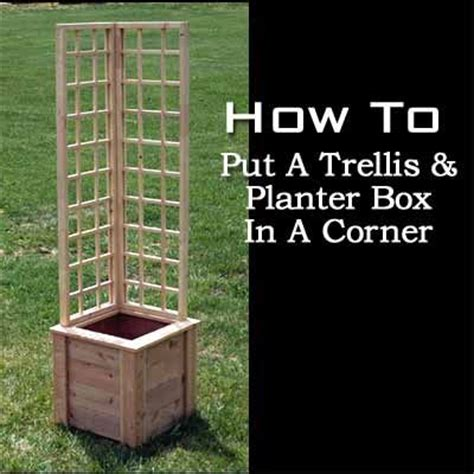 Corner Trellis Planter by How To Put A Trellis And Planter Box In A Corner Flowers