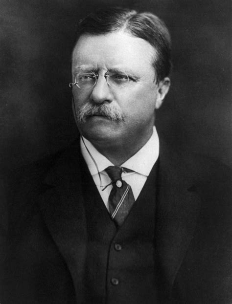 presidency of theodore roosevelt wikipedia the free kmullican11 1900 1914 new american century