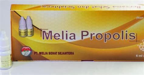Propolis Melia New pt melia sehat sejahtera melia propolis untuk penyakit maag