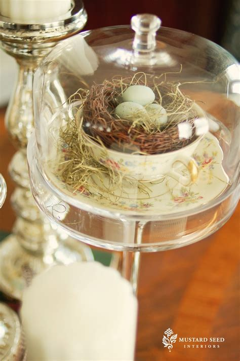 room remix best decorating glass domes 43 best nests images on nests easter and
