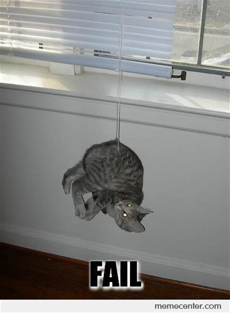 Fail Meme - cat fail by ben meme center