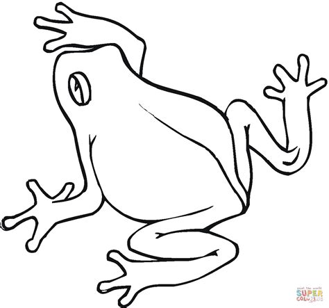simple frog coloring page image gallery rana dibujo