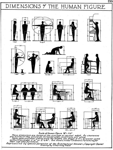 office layout guidelines dimensionsofhumanfigure for furniture dimensions duh
