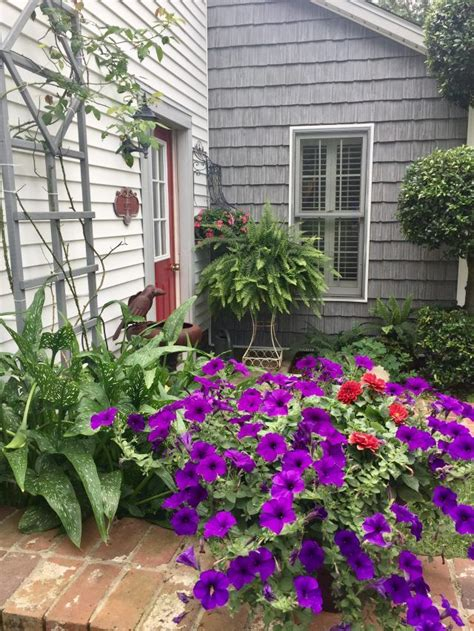 Garden Shingle Ideas S Ideas For The Remedial Gardener Me Shake Shingle Garden Nurani