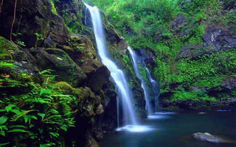 green waterfall hawaii islands coast rocks green fern hd