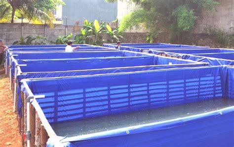 Harga Terpal Kolam 6 8 jual terpal kolam lele 3x2x0 5 meter kolam terpal ukuran