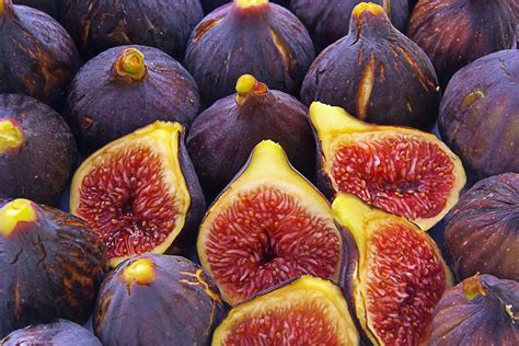 fig wallpapers images  pictures backgrounds