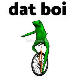 Unicycle Meme - best 25 frog on a unicycle ideas on pinterest