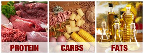 carbohydrates vs proteins separating proteins from carbs and calorie concept
