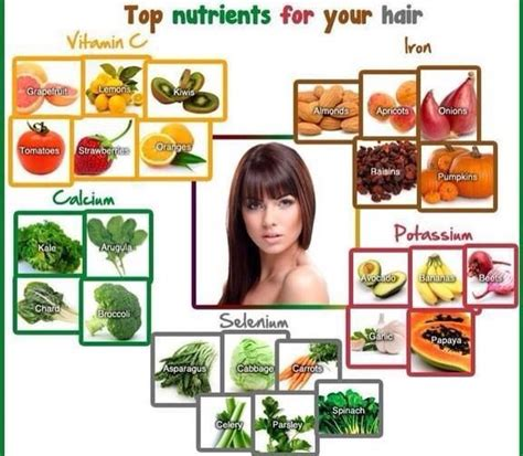 Hairstyle Products With Nutrients by Top Nutrients For Your Hair Trusper