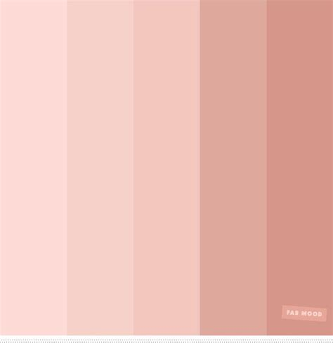 blush color best 25 blush color palette ideas on pink
