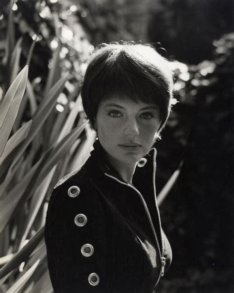 jaqueline hair cut retro short hair jacqueline bisset 1965 short hair