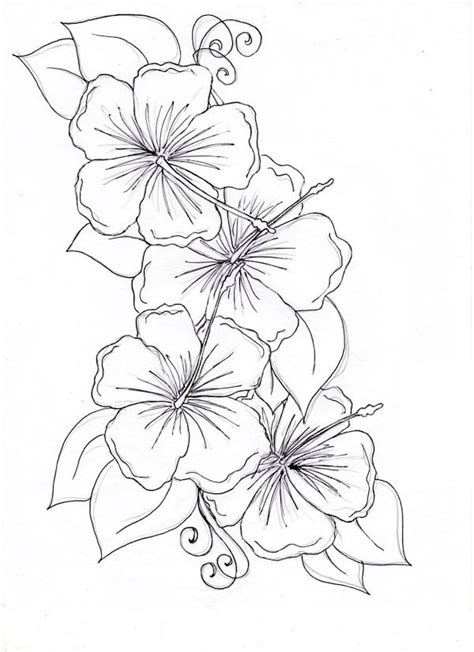 types of flowers coloring pages hibiscus flower hibiscus flower drawing coloring page
