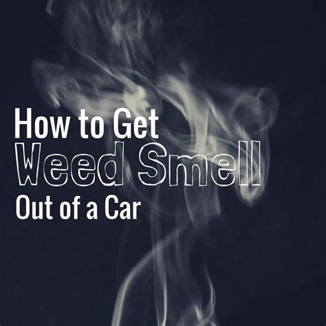 how to get weed smell out of house 26 best smoke odor eliminators images on pinterest odor eliminator smoke smell and