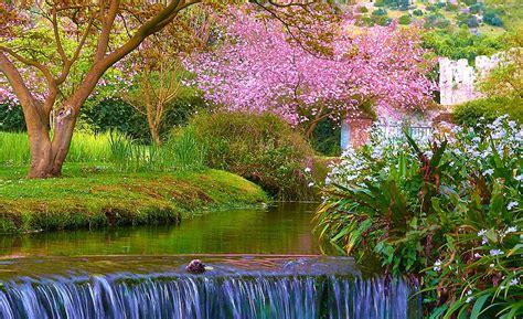 nature spring scene ipad air wallpapers