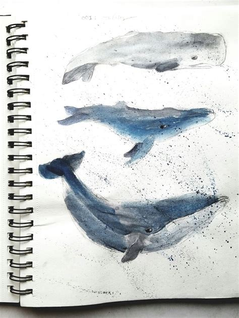 watercolor whale tutorial 17 best images about drawings on pinterest disney