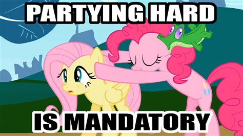 Magic Meme Gif - image 621674 my little pony friendship is magic