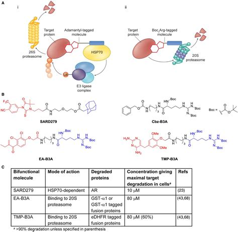 protein degradation chemical approaches to targeted protein degradation