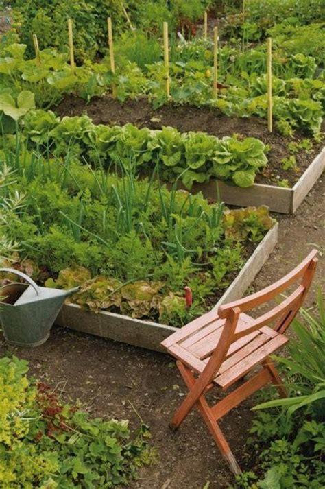 Raised Bed Vegetable Garden Gardens Vegetables And Raised Vegetable Gardens For Beginners