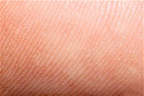 human skin macro stock photos image 14341663 human skin macro stock image image of healthcare papillary 14341663